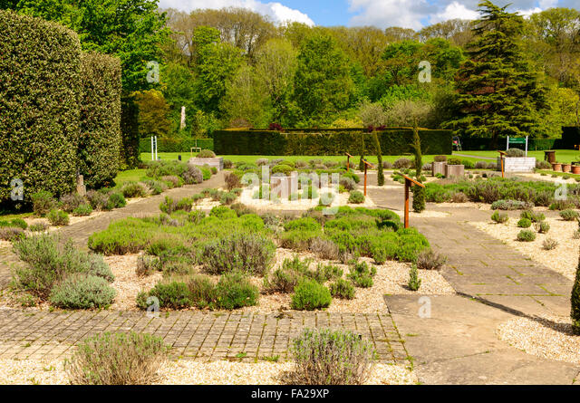 Marvellous Lavender Garden Buckfast Abbey Stock Photos  Lavender Garden  With Marvelous One Of Three Formal Gardens Modeled Partly On Medieval Plans The Lavender  Garden Creates A With Beautiful North Wales Water Gardens Also Family Garden Compostela Tenerife In Addition Bq Garden Lights And Garden Centres In Warrington As Well As Garden Lesson Plans For Toddlers Additionally Polwarth Gardens From Alamycom With   Marvelous Lavender Garden Buckfast Abbey Stock Photos  Lavender Garden  With Beautiful One Of Three Formal Gardens Modeled Partly On Medieval Plans The Lavender  Garden Creates A And Marvellous North Wales Water Gardens Also Family Garden Compostela Tenerife In Addition Bq Garden Lights From Alamycom