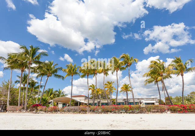 matheson hammock park beach in miami florida united states   stock image cutler bay stock photos  u0026 cutler bay stock images   alamy  rh   alamy