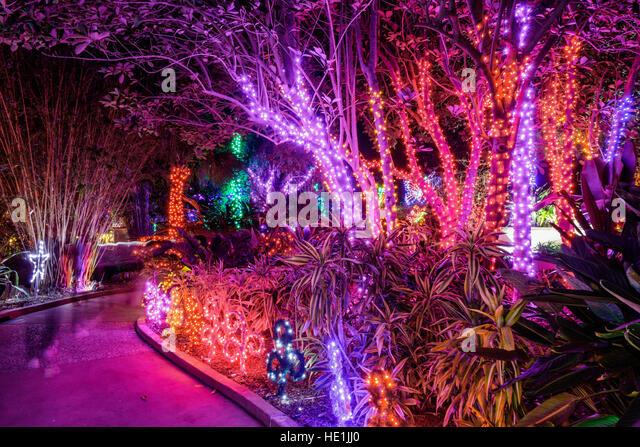 Florida botanical gardens largo stock photos florida - Florida botanical gardens christmas lights ...