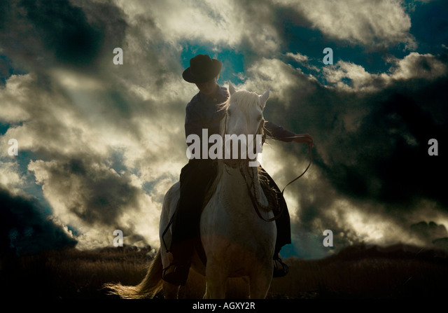 woman and camargue horse stock photos woman and camargue horse stock images alamy. Black Bedroom Furniture Sets. Home Design Ideas