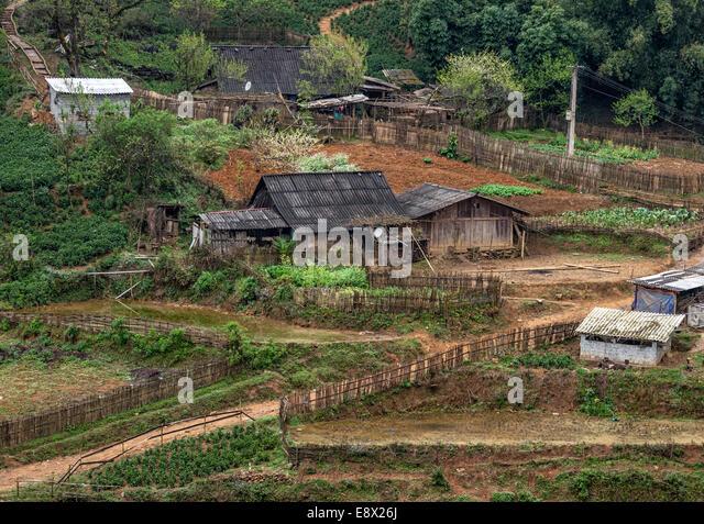 Hmong old veggie pussy motel sex poj nrauj 10