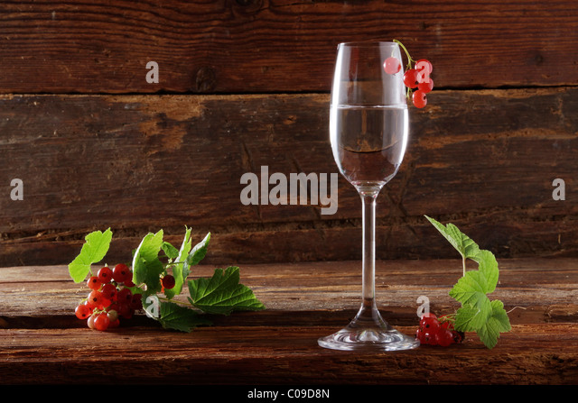 Red-Currant Schnapps Recipe — Dishmaps