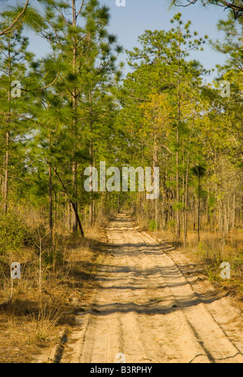 Branch Road Stock Photos & Branch Road Stock Images