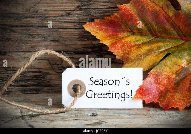 Seasons autumn fall season seasons greetings stock photos seasons a fall label with the words seasons greetings on it autumn background stock image m4hsunfo