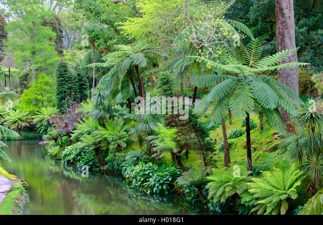 botanische gaerten stock photos botanische gaerten stock images alamy. Black Bedroom Furniture Sets. Home Design Ideas
