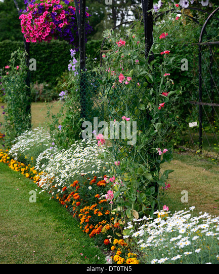 Flower Beds And Borders: Flower Display Border Stock Photos & Flower Display Border