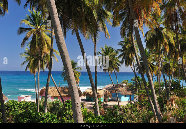 bahoruco men Homes for sale in dominican republic view photos and listing details of dominican republic real estate, save or compare the properties you like.