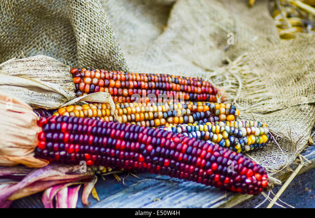 corn hindu singles Meet british asian hindu singles welcome to our site, join us and meet thousands of asian hindu professionals over 15000 british hindu members.