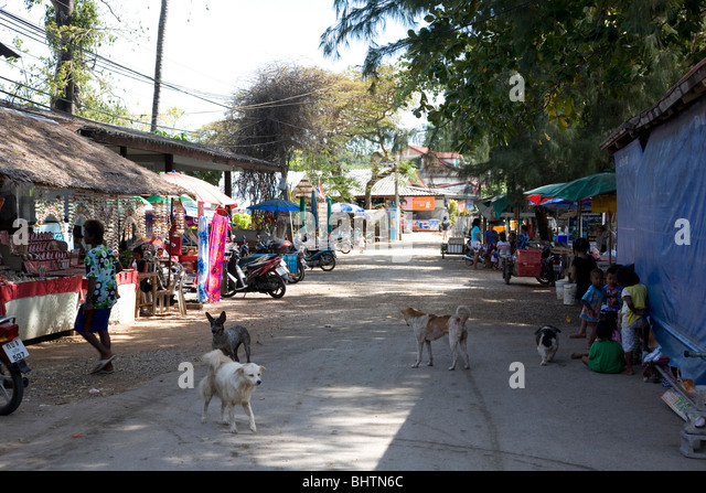 Gypsy Dog Stock Photos & Gypsy Dog Stock Images - Alamy