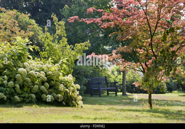 Emmetts garden stock photos emmetts garden stock images for Garden trees kent