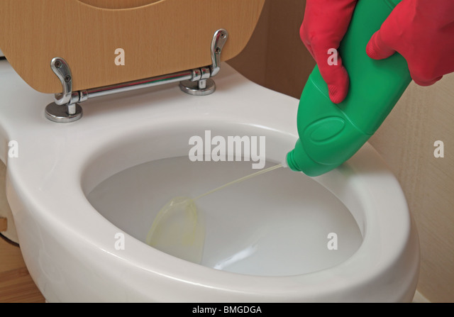how to clean toilet seat with bleach
