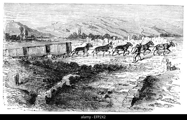 agriculture in 19th century Agriculture, american history - farming in 19th century america.