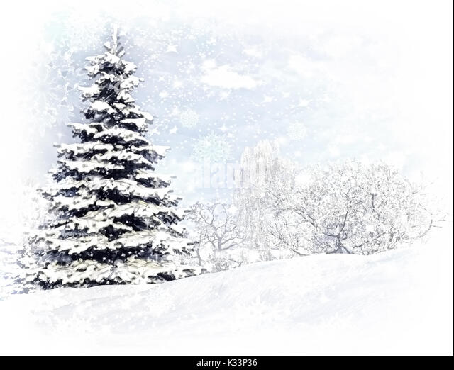 Christmas Tree After A Snow Storm Blizzard.   Stock Image