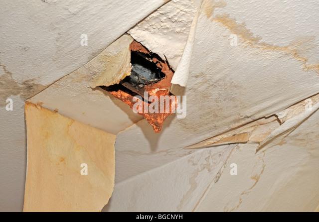 Leaking Roof Interesting Roofers In Leak Repairs New