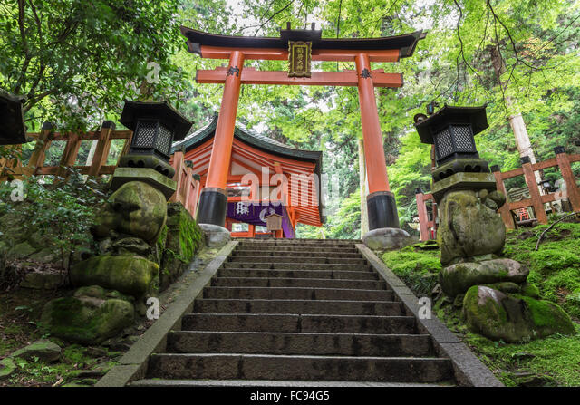 kyoto asian singles Meet face to face with japanese people in their true culture for dating, becoming friends or learning japanese language can't go to japan do not worry, at truelovejapan there is even japanese from overseas meeting local asian men and women has never been easier and safe tokyo 東京都 osaka 大阪府 hokkaido 北海道 okinawa 沖縄県 okayama 岡山県 kyoto.