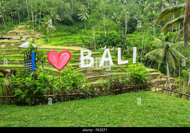 I love bali stock photos i love bali stock images alamy for Love on the terraces