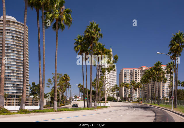Avenue Palms Stock Photos Avenue Palms Stock Images Alamy