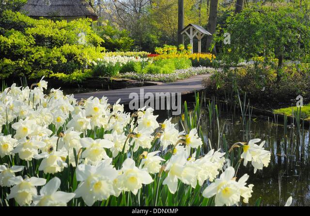Formal Garden Design Stock Photos Formal Garden Design