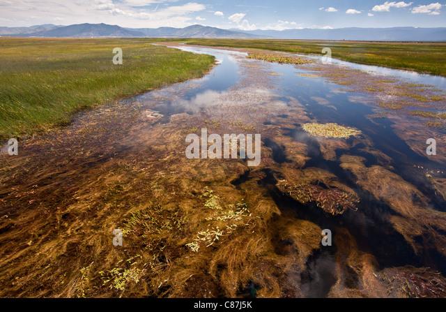 Upland california stock photos upland california stock for Sierra valley