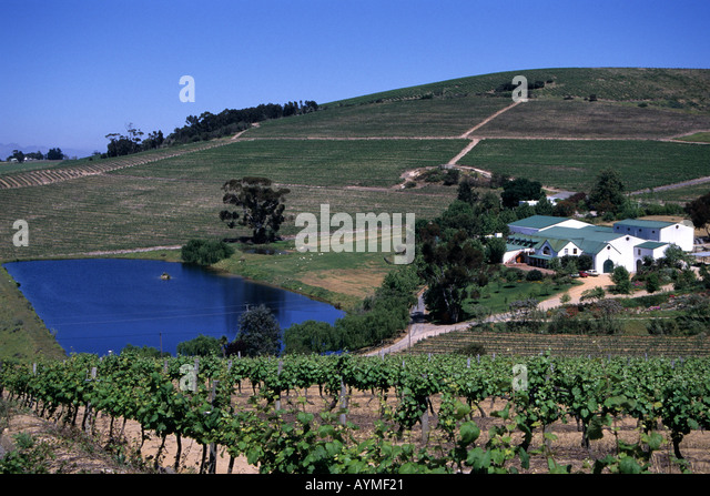 Jordan wine stock photos jordan wine stock images alamy for Jardin winery south africa