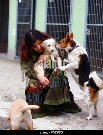 Photos Of Dogs Behind Bars Increase Adoption