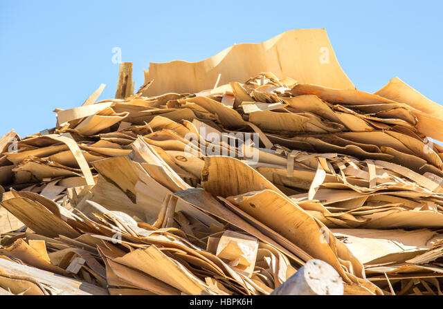 Burning Wood Biomass ~ Wood biomass stock photos images alamy