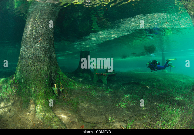 wooden-bench-in-overflowed-green-lake-tr