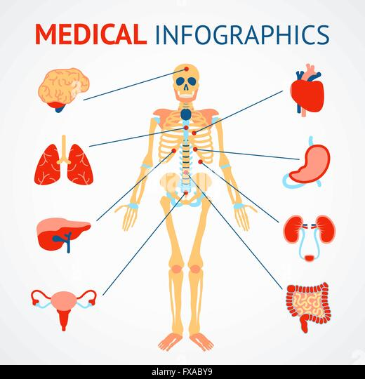Infographic Template Design Human Eye Stock Photos & Infographic ...