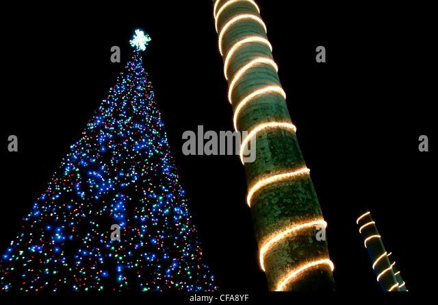 Delray Beach Christmas Tree Stock Photos Delray Beach Christmas