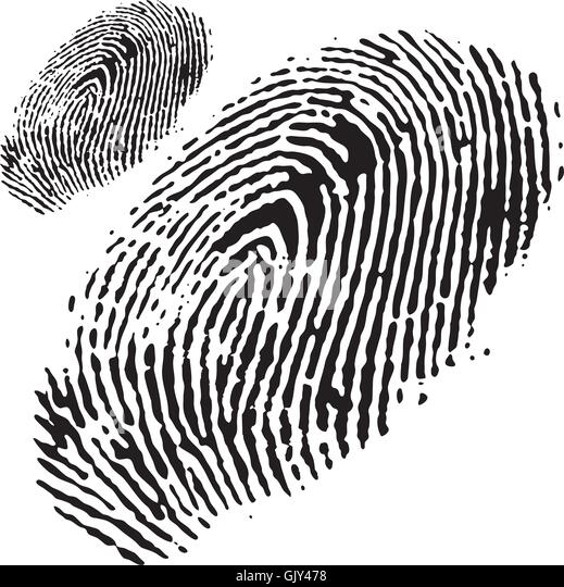 fingerprint macro stock photos  u0026 fingerprint macro stock