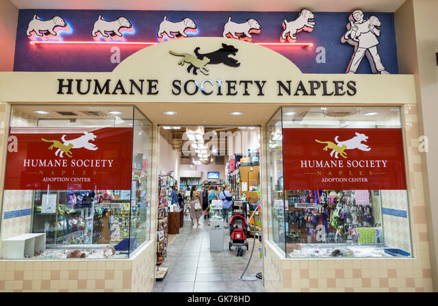 Palm Beach Rescue Humane Society