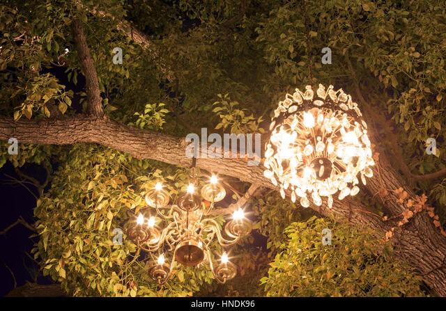 Chandelier Tree Stock Photos & Chandelier Tree Stock Images - Alamy