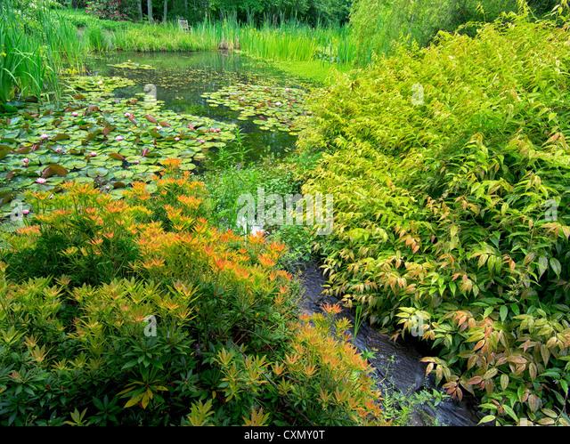 Gardens stock photos gardens stock images alamy for 7194 garden pond