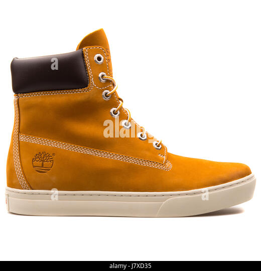 Timberland 2.0 Cupsole 6 inch Wheat Mens Boots - 6667R - Stock Image