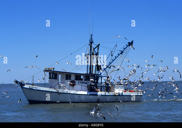 Carrabelle stock photos carrabelle stock images alamy for Galveston fishing party boats