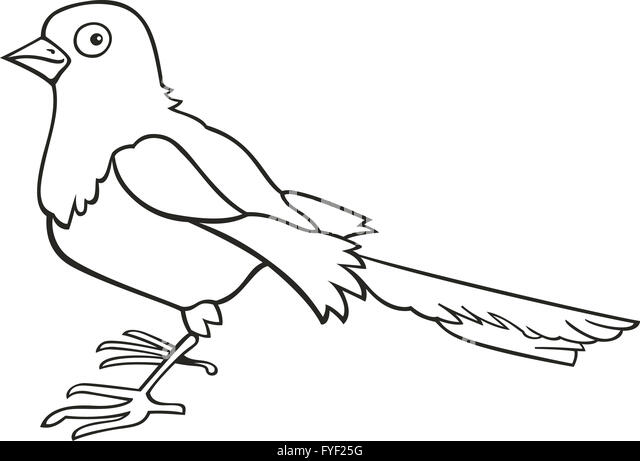 Magpie Cut Out Stock Images Pictures Alamy