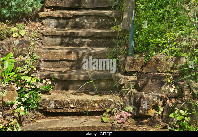 Stage Stairs Stock Photos & Stage Stairs Stock Images - Alamy