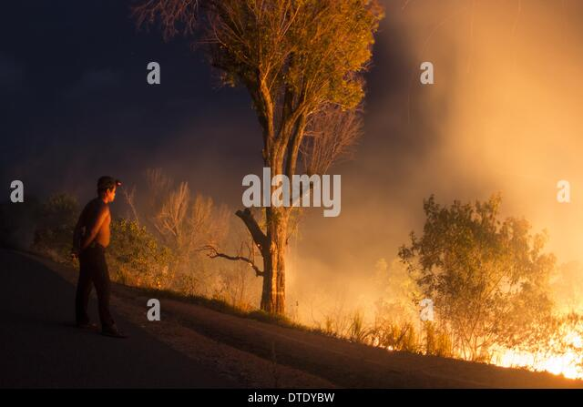 76 Hectares of forest on Mount Bromo are burned