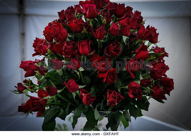 floral art composition stock photos floral art. Black Bedroom Furniture Sets. Home Design Ideas