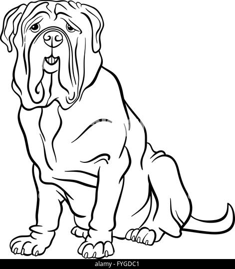 neapolitan mastiff dog cartoon for coloring stock image