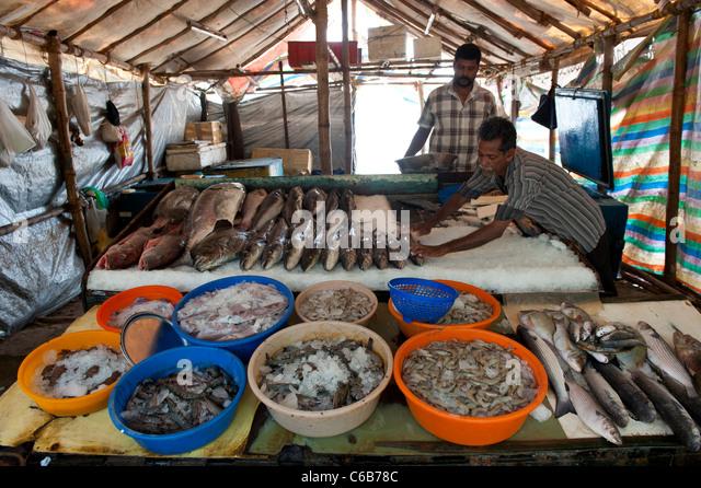Fort cochin fish market india stock photos fort cochin for Chinese fish market near me