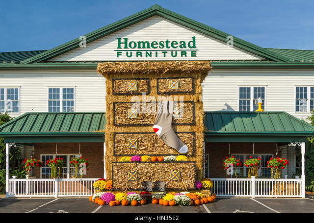 Mums flowers stock photos mums flowers stock images alamy for Homestead furniture oregon