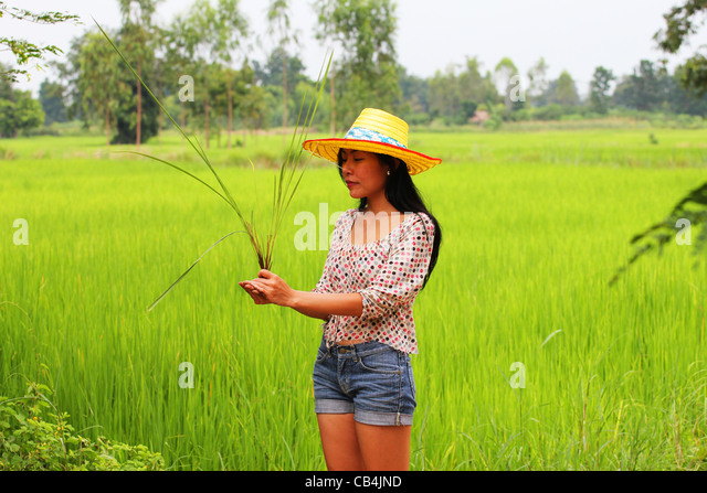 nakorn panom muslim Nakhon phanom city nakhon phanom  christian, hindu, jewish, mormon, muslim, scientology  thai romances is one of the fastest growing online thai dating.