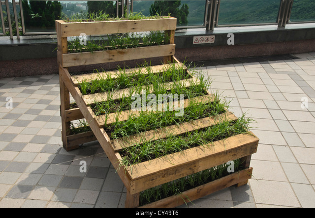 Pallet And Garden Stock Photos Pallet And Garden Stock Images