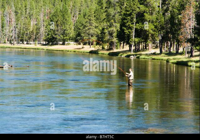 Madison river fishing stock photos madison river fishing for Yellowstone river fishing