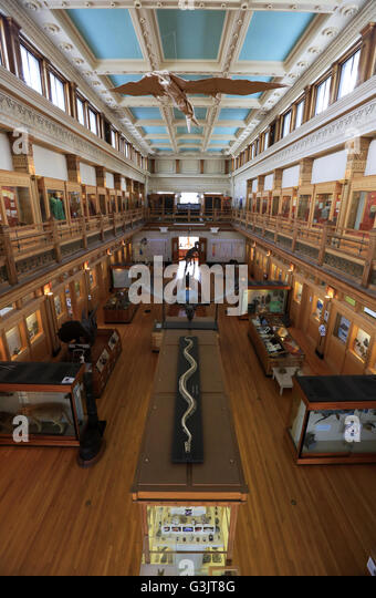 Foyer Museum Quebec : Redpath stock photos images alamy