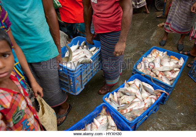 Khulna stock photos khulna stock images alamy for Village fish market