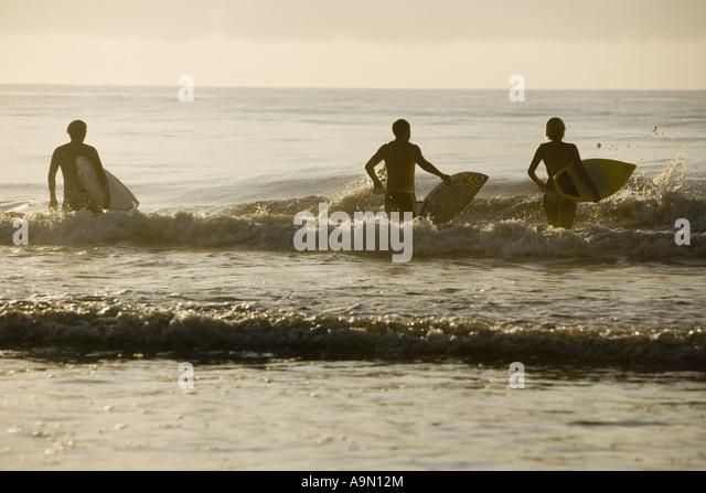 image Surfer dude stumbles into sex