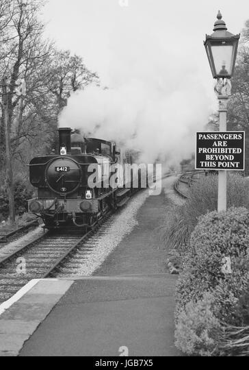GWR 0-6-0 pannier tank No 6412 hauling a goods train through Staverton station on the South Devon Railway. - Stock Image