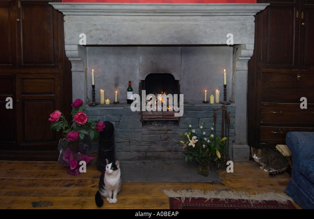 A Cat Sits In Front Of Large Hearth The Dining Room Georgian